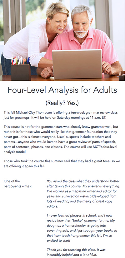 Four-level grammar analysis for adults